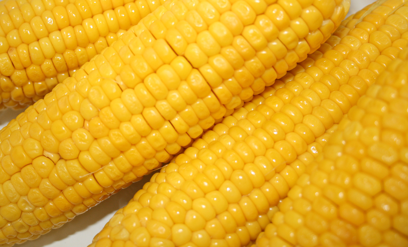 Corn Stock Photos & Pictures. Royalty Free Corn Images And ...