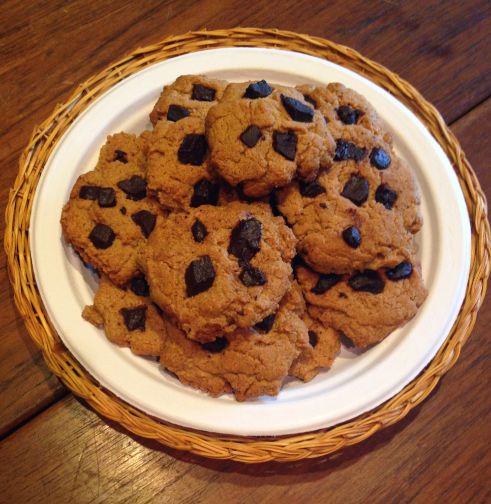 protein pb choco cookies